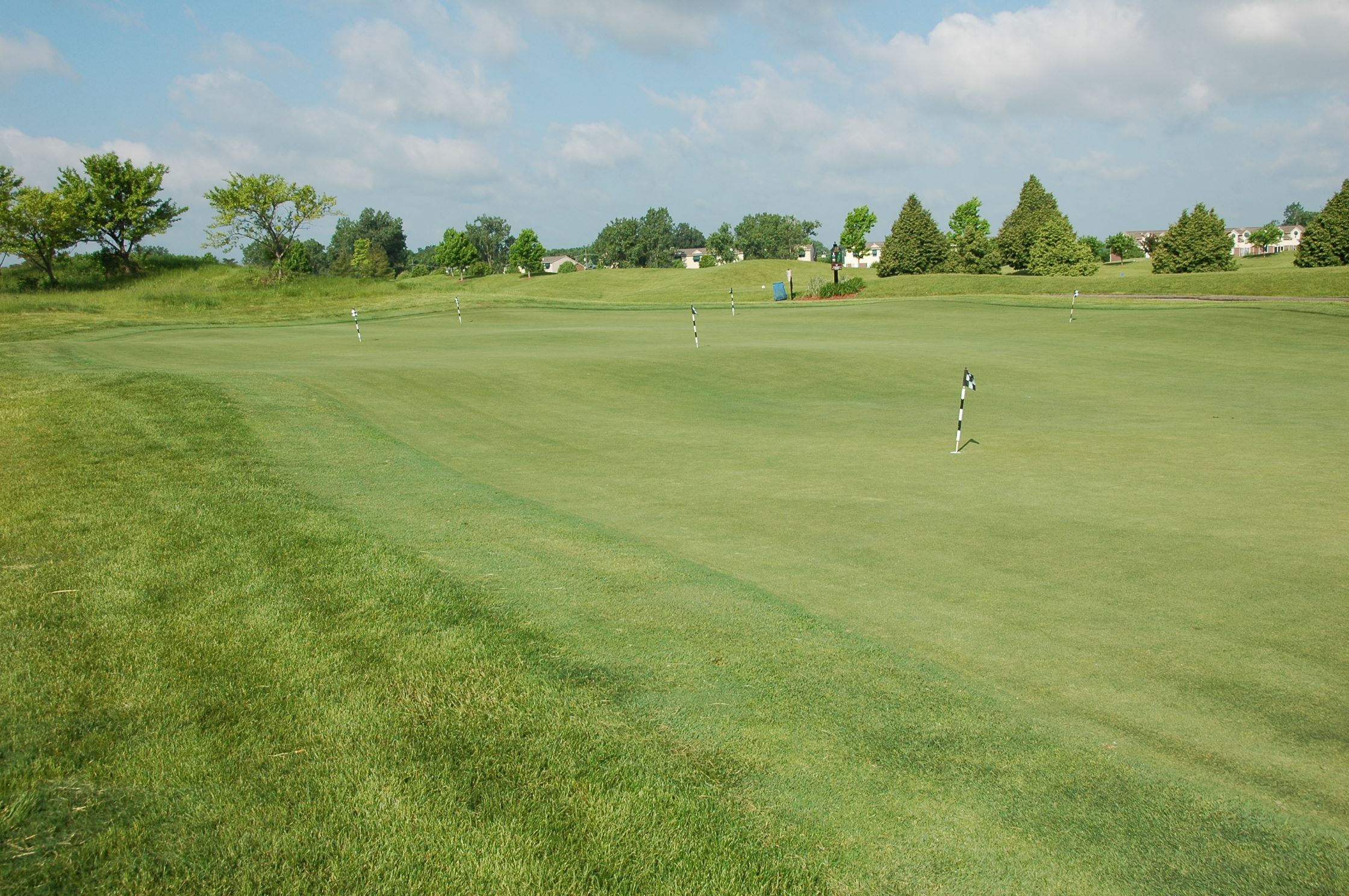 lakes practice green