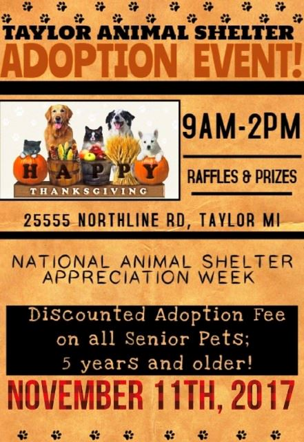 ANIMAL SHELTER ADOPTION EVENT NOV 11 2017
