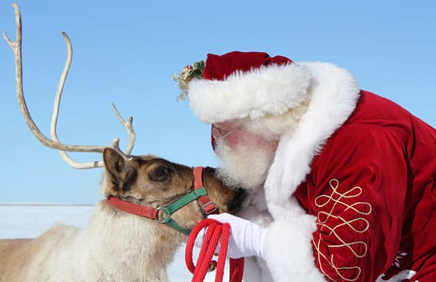 Reindeer Days at the Petting Farm @ Heritage Park Petting Farm | Taylor | Michigan | United States
