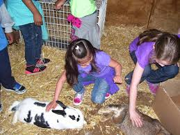 Children petting rabbit